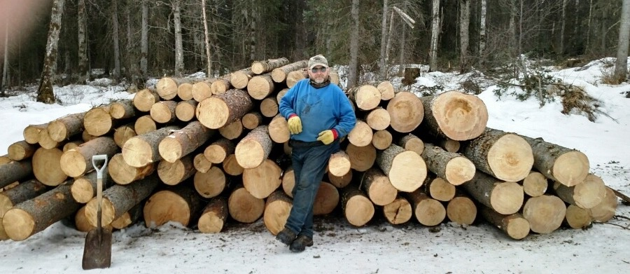 larry beyer log stack